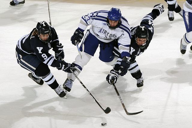 hráči hokeje